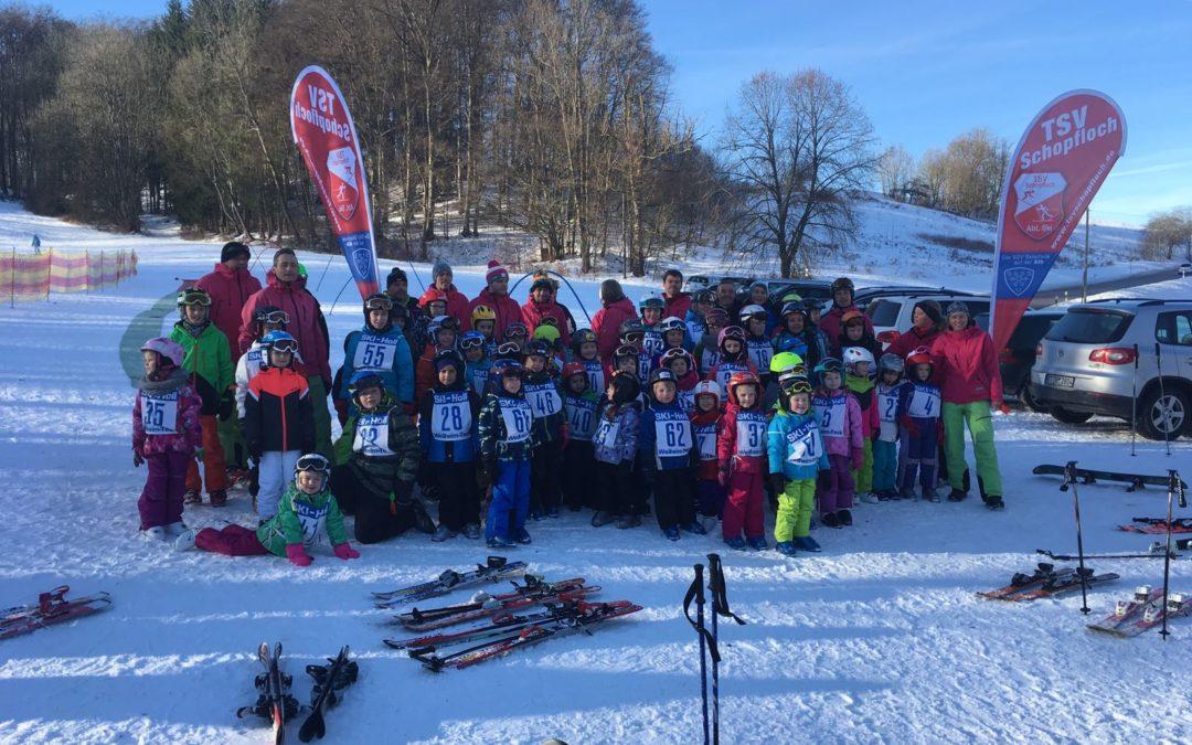 Skikurs/Snowboardkurs 28.+29. Januar 2017